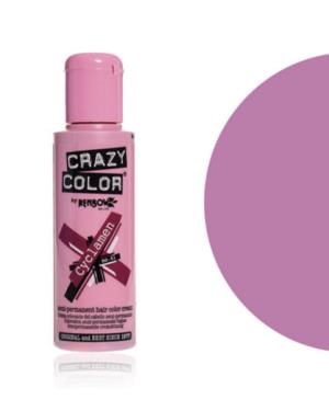 lavender crazy color