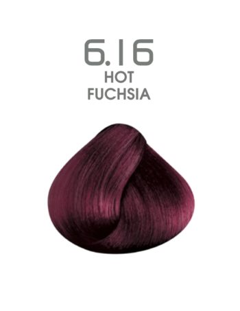 hair passion 6.16