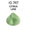 citrus lime