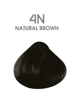 hair passion 4N