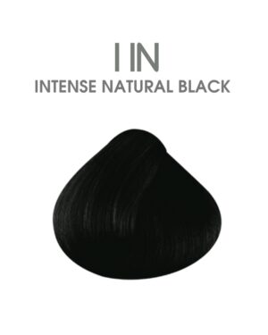 hair passion color & chic 1 IN