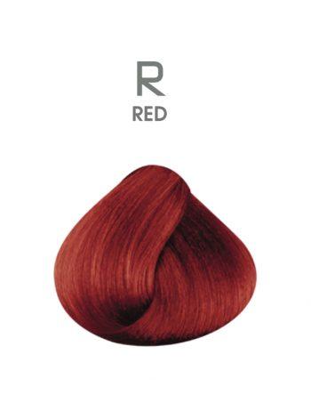 HAIR PASSION R