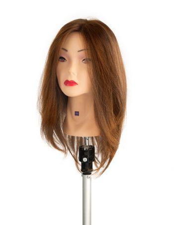 trening glava za frizere